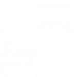 brussels airport logo veovo